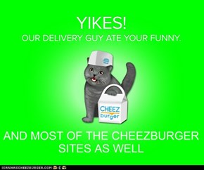 No Cheezburger For You!