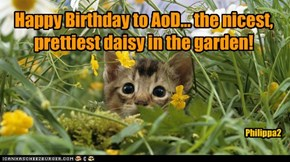 Happy Birthday to alisaorrdaisy!