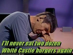 I'll never eat two dozen White Castle burgers again