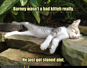 Barney wasn't a bad kitteh really.