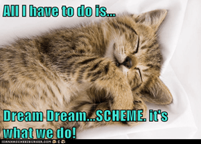 All I have to do is...  Dream Dream...SCHEME. it's what we do!