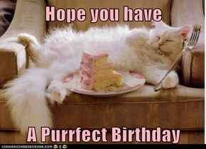 Hope you have  A Purrfect Birthday