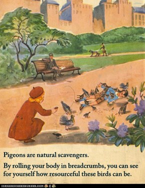 Pigeons Are Natural Scavengers