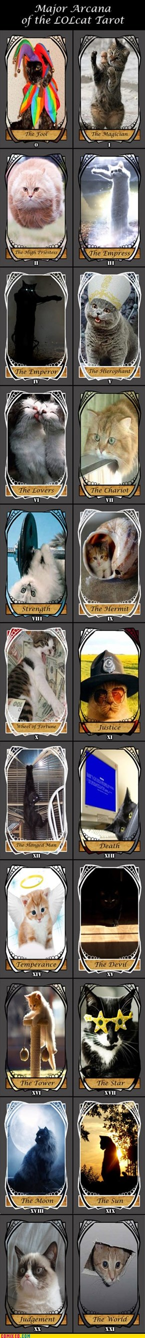 The LOLcat Tarot