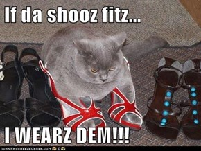 If da shooz fitz...  I WEARZ DEM!!!