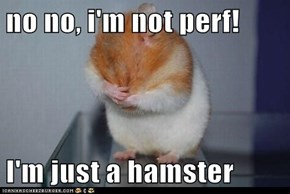no no, i'm not perf!  I'm just a hamster