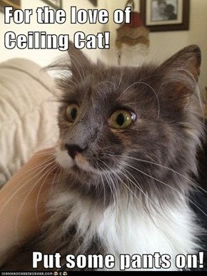 For the love of   Ceiling Cat!  Put some pants on!