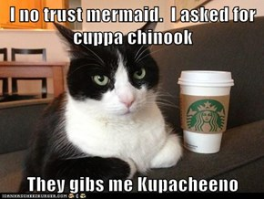 I no trust mermaid.  I asked for cuppa chinook  They gibs me Kupacheeno