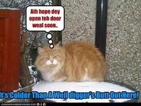 Aih hope dey open teh door weal soon..