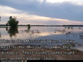 "This is the Mississippi River looking west to the Missouri bank in the distance. Those bushes onthe right are on the ""normal"" shore."