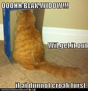 OOOHH BLAK WIDOW!!! Wil get it out if ai dunnot croak furst.