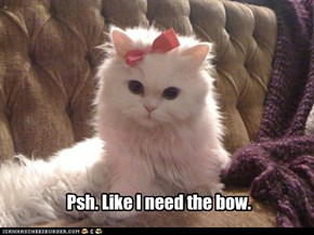 Psh. Like I need the bow.