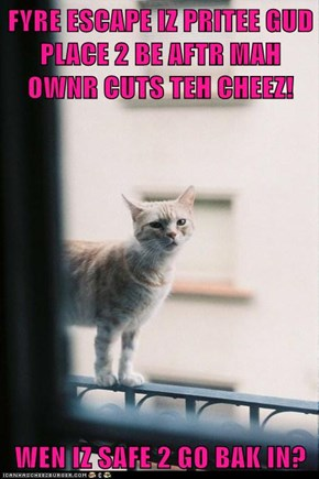 FYRE ESCAPE IZ PRITEE GUD PLACE 2 BE AFTR MAH OWNR CUTS TEH CHEEZ!  WEN IZ SAFE 2 GO BAK IN?