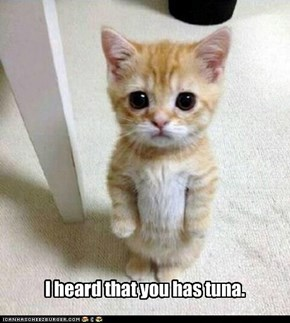 I heard that you has tuna.