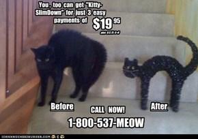 Cat Infomercials.