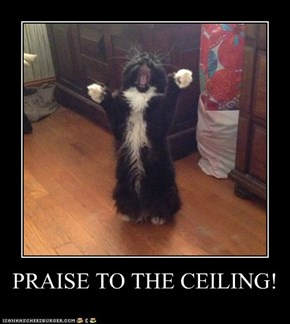 PRAISE TO THE CEILING!
