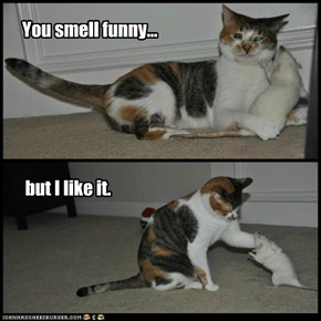 You smell funny...