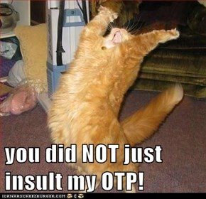 you did NOT just insult my OTP!