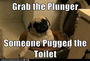 Grab the Plunger  Someone Pugged the Toilet
