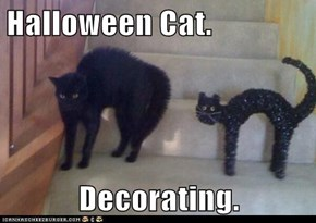 Halloween Cat.  Decorating.