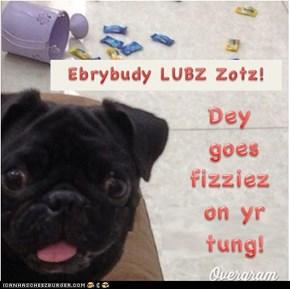 Pugz Lubz Zotz!