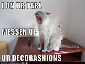 I ON UR TABL MESSEN UP  UR DECORASHIONS