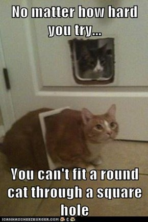 No matter how hard you try...  You can't fit a round cat through a square hole