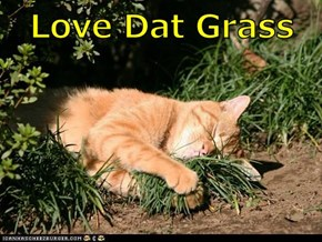 Love Dat Grass