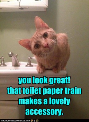 you look great! that toilet paper train makes a lovely accessory.