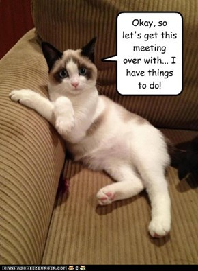 Okay, so let's get this meeting over with... I have things to do!