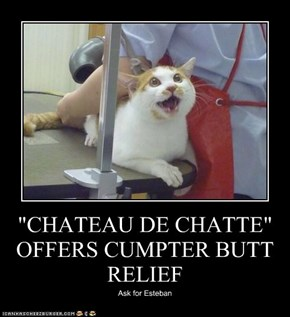"""CHATEAU DE CHATTE"" OFFERS CUMPTER BUTT RELIEF"