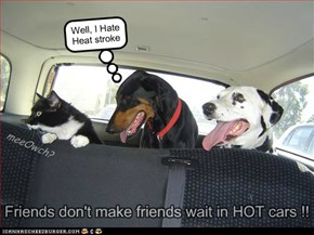 Friends don't make friends wait in HOT cars !!