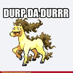 DURP DA DURRR
