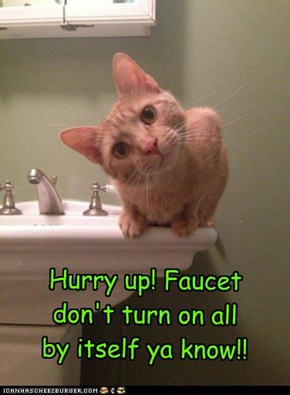 Hurry up! Faucet don't turn on all by itself ya know!!
