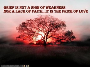 Grief is not a sign of weakness~Author Unknown