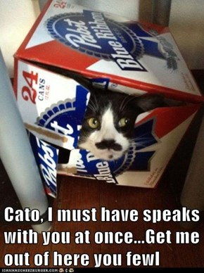 Cato, I must have speaks with you at once...Get me out of here you fewl