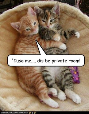 'Cuse me.... dis be private room!