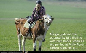 Margo grabbed this  opportunity of a lifetime with both hoofs, when all the ponies at Pritty Pony Riding Skool fell ill...