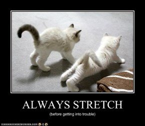 ALWAYS STRETCH