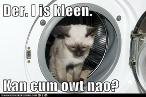 Der. I is kleen.  Kan c*m owt nao?