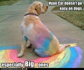 Nyan Cat doesn't go easy on dogs