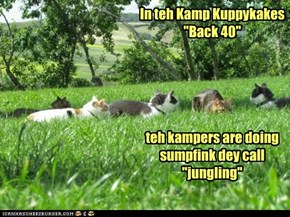 "In teh Kamp Kuppykakes ""Back 40""       teh kampers are doing sumpfink dey call  ""jungling"""