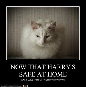 NOW THAT HARRY'S SAFE AT HOME