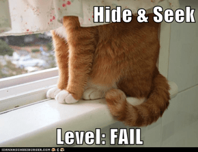 Hide & Seek  Level: FAIL