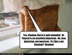Rufus calls Shadow at camp.