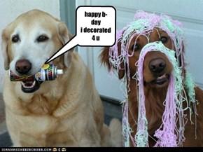 b-day dog