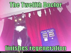 The Twelfth Doctor  finishes regeneration