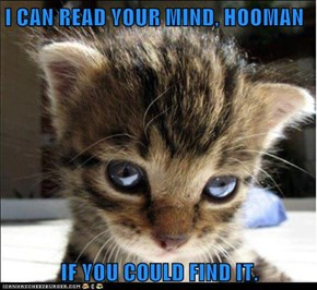 I CAN READ YOUR MIND, HOOMAN  IF YOU COULD FIND IT.