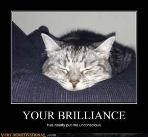 YOUR BRILLIANCE