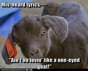 "Mis-heard lyrics----  ""Ain't no lovin' like a one-eyed goat!"""